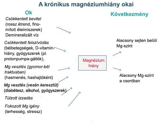 A magnéziumhiány okai