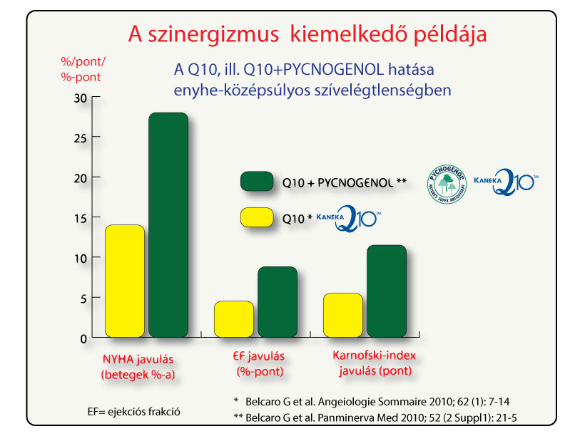 A Pycnogenol és a Q10 öszeadódó hatása szívelégtelenségben