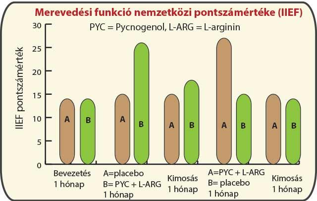 A Pycnogenol + L-arginin kezelés visszaállította a normál erekciós funkciót