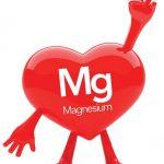 Magnézium és a szív