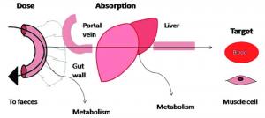 biohasznosulás