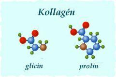 CollaTeam kollagen glicin prolin